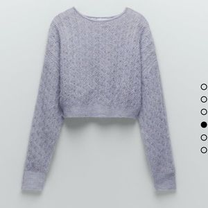 Zara Special Edition Cropped Sweater